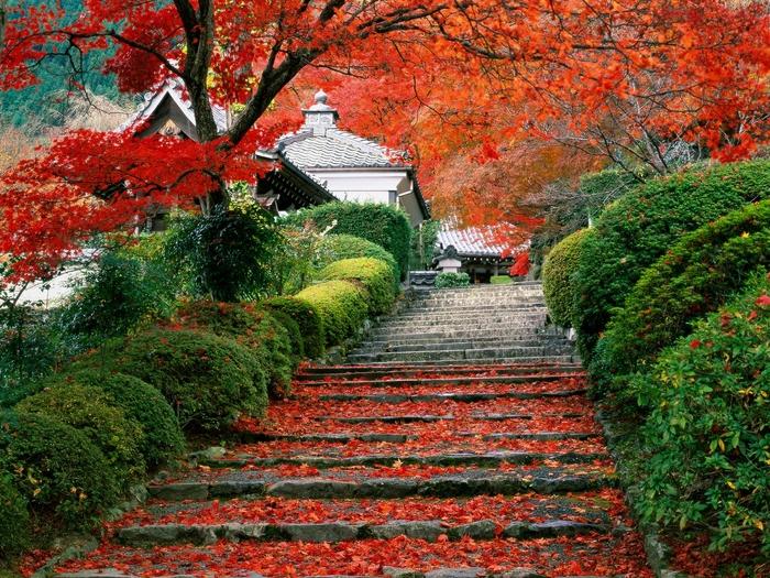 Популярные места Японии