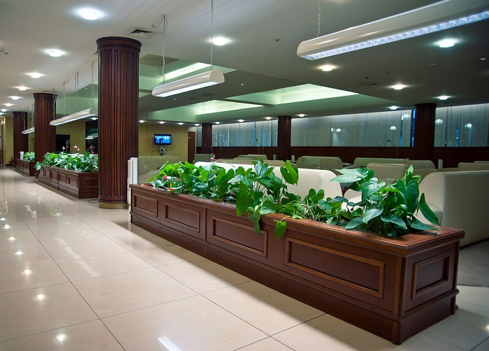 В чем отличие условий ВИП-зала и бизнес-зала в Домодедово