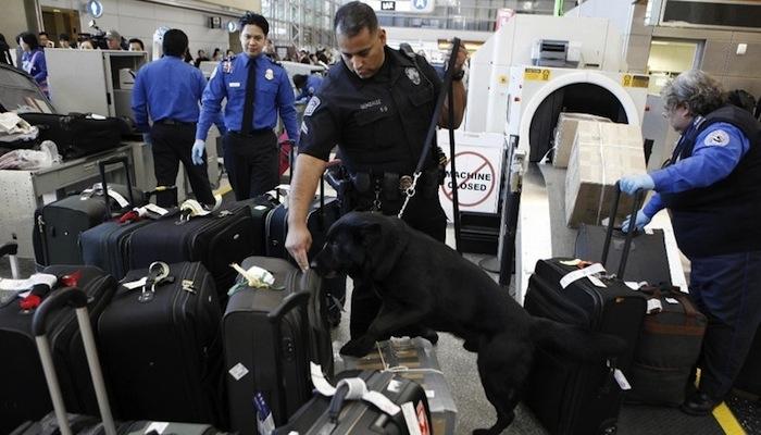 Правила оформления багажа перед рейсом