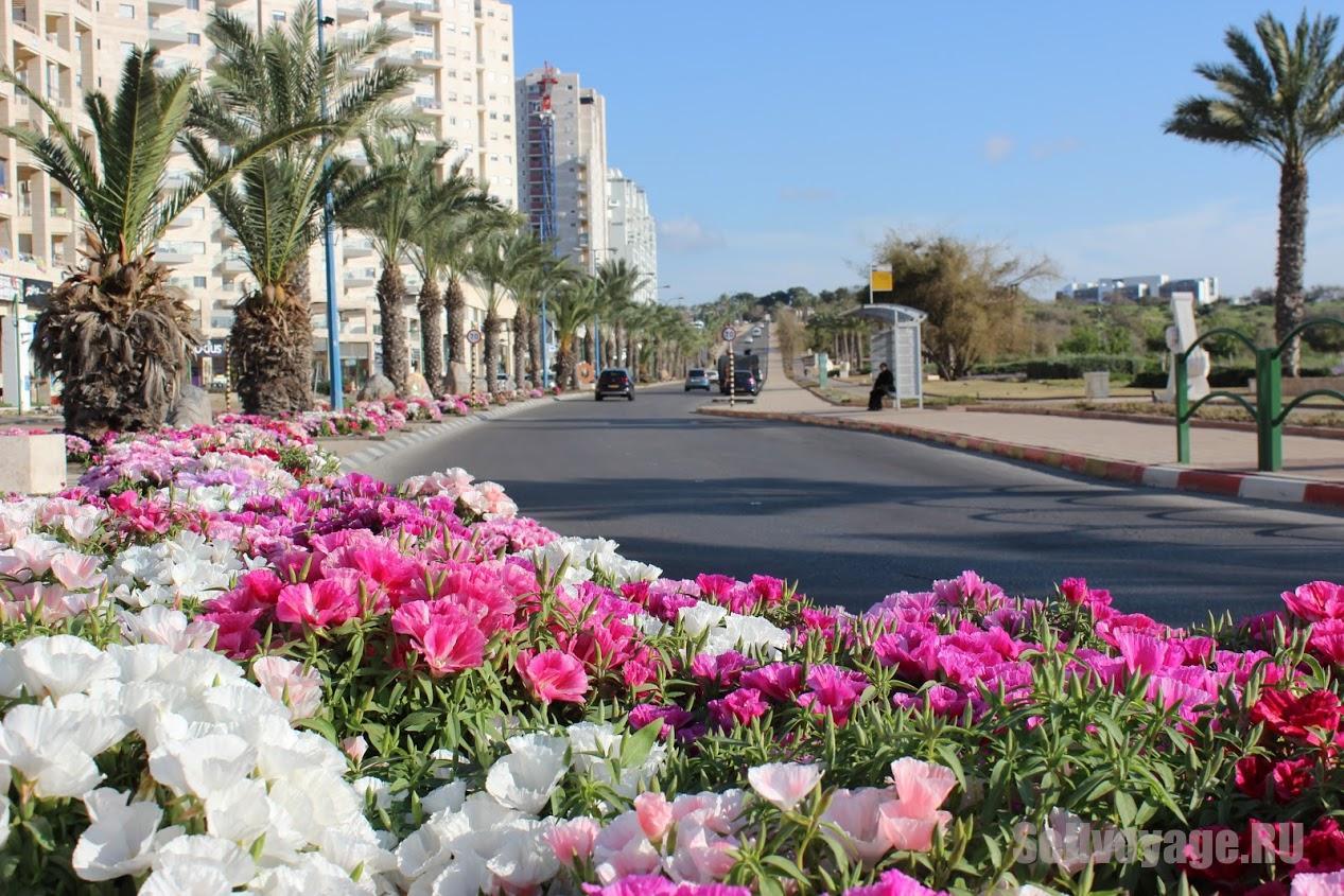 Аренда авто в Израиле. Важные советы и рекомендации