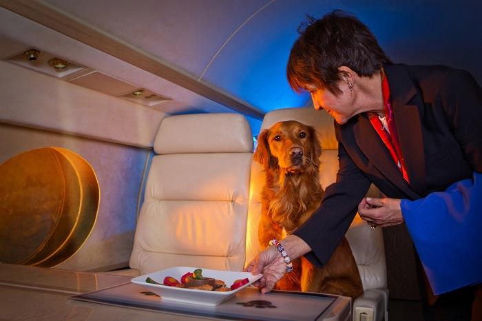 Услуги, позволяющие летать с удовольствием